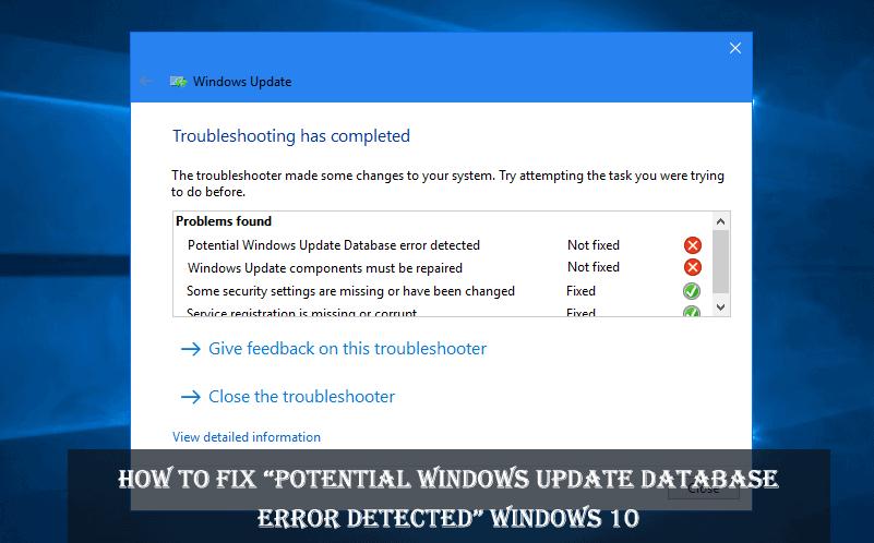 potential-windows-update-database-error-detected-win10